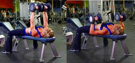 Bench press with barbell or dumbbell,