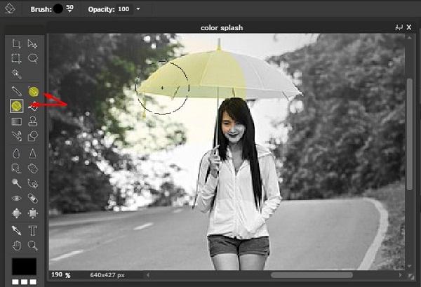 Color Splash Dengan Editor Online