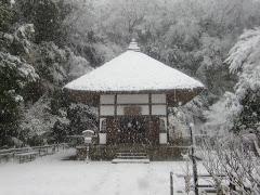 雪の明月院