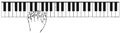 vị trí tay ở đồ học piano