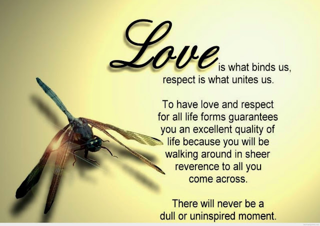Inspirements Most Beautiful Love Quotes Hd