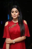 Poorna in Maroon Dress at Rakshasi movie Press meet Cute Pics ~  Exclusive 96.JPG