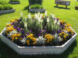 Try Our Ideas To Make Your Garden Beautiful