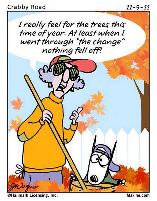 maxine cartoons fun fall funny humor jokes cartoon quotes autumn change leaves season falling humour weather joke trees crabby tree