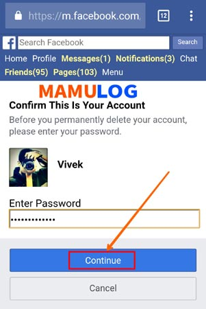 enter facebook password