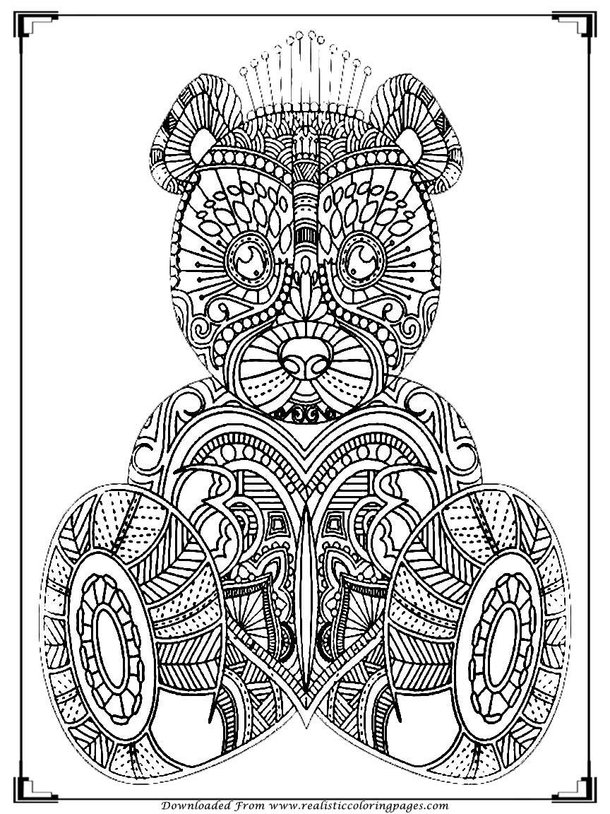Bear Coloring Pages For Adult Printable  Realistic -2824