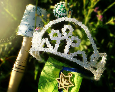 coroa-alto santo-maraca-estrela-roseta-santo daime