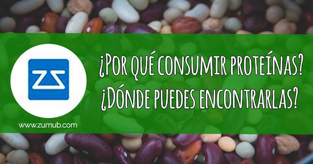 Porqué debes consumir proteinas