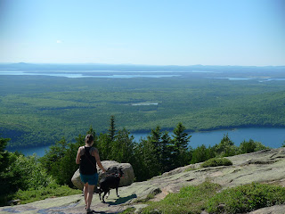 Acadia-National-Park-Cadillac-Mountain