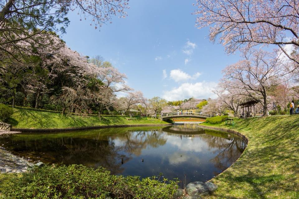 Share Experience Tour to Japan Flower Garden