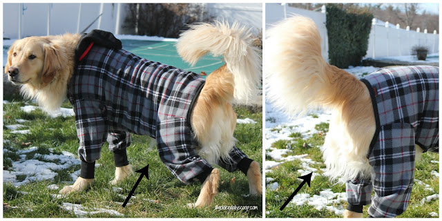 ultra paws snojam fleece dog coat keeps dogs protected during the winter