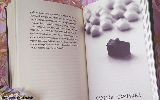 livro,Po-de-parede, Carol-Bensimon, Nao-Editora, trecho,