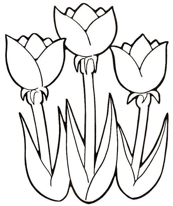 Desenhos De Flores Para Imprimir E Pintar