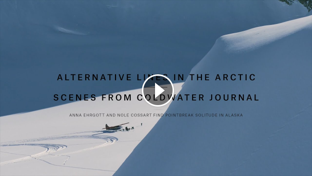 Alternative Lines in the Arctic Scenes From Coldwater Journal