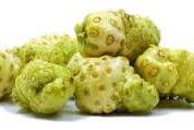 Manfaat buah mengkudu untuk obat osteoporosis
