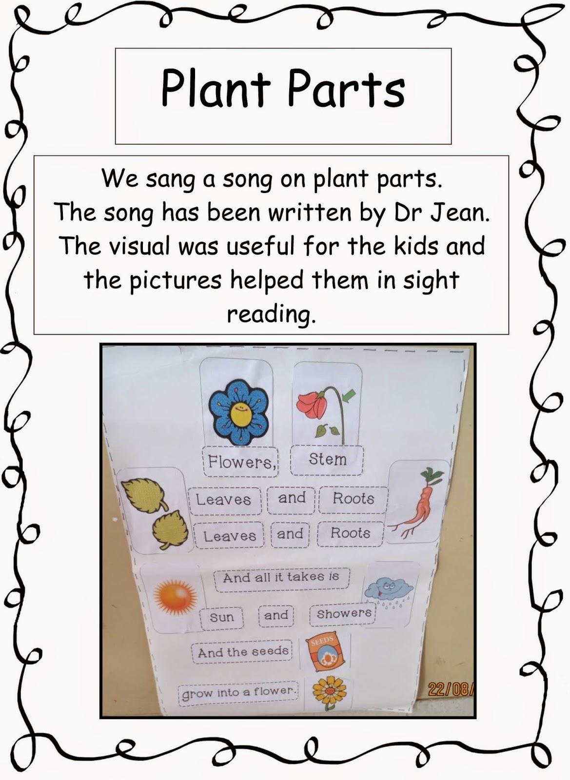 Spoonfuls Of Kindergarten Plants