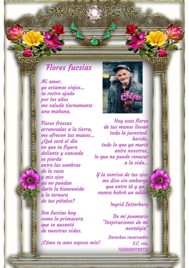 FLORES FUCSIAS Flores%2Bfucsias