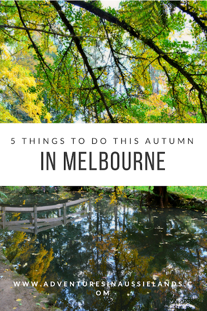 5 Things to Do This Autumn in Melbourne