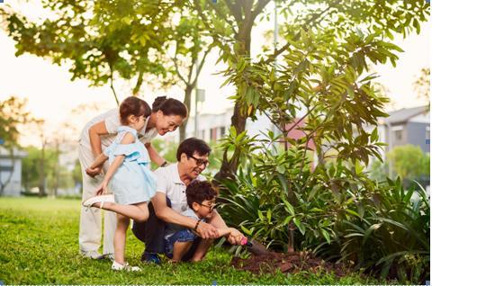 Thiên nhiên hòa quyện với đời sống tại Khu đô thị xanh Annecy Gardens