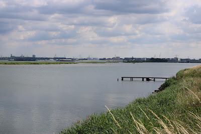 Kinselmeer