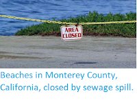 http://sciencythoughts.blogspot.co.uk/2018/01/beaches-in-monterey-county-california.html