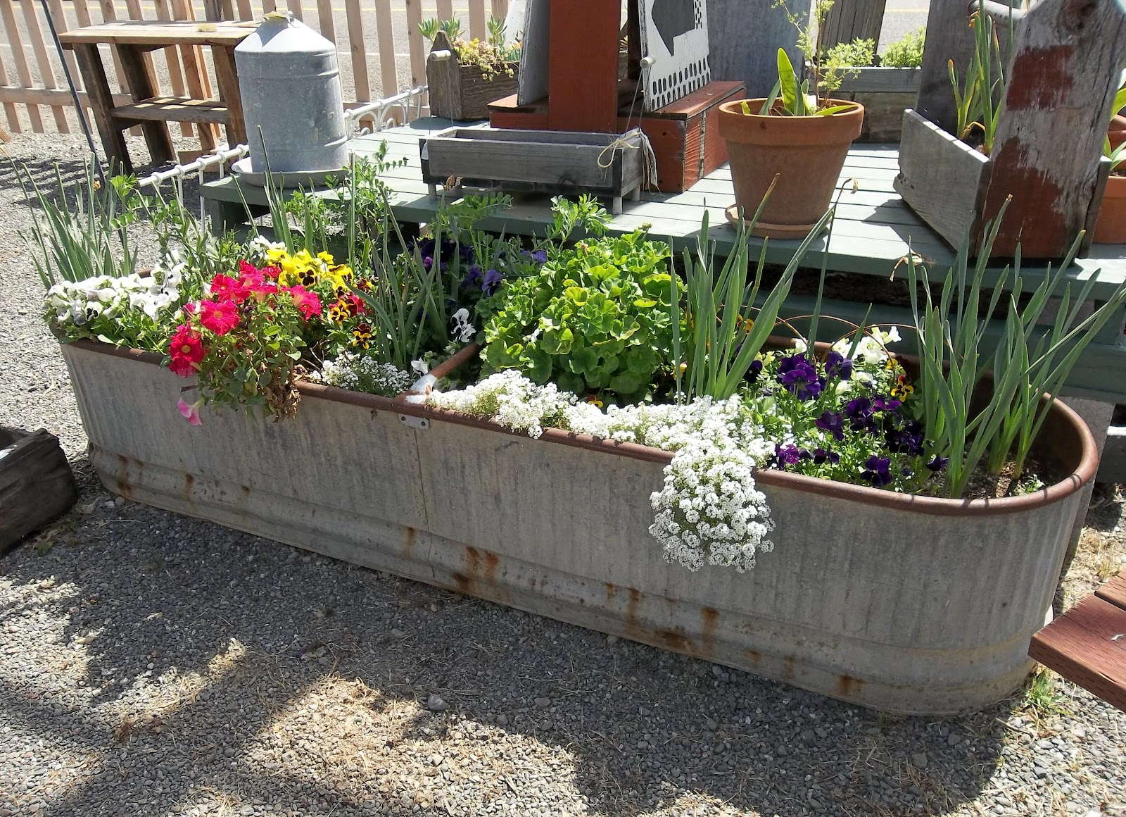 Gin Gilli S Vintage Home Unique Container Gardening Ideas