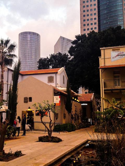 Сарона | Блог Rimma in Israel