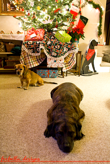 Magnum and Mollie under the Christmas Tree via foobella.blogspot.com