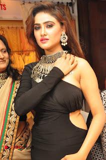 Actress Sony Charishta Desire Exhibition Launch  0033
