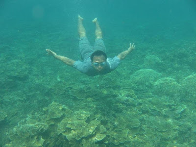 558664 2094259133060 1742785944 1012262 1962098526 n Child of Krakatoa, The Beauty of Archipelago and the Amazing Underwater Views