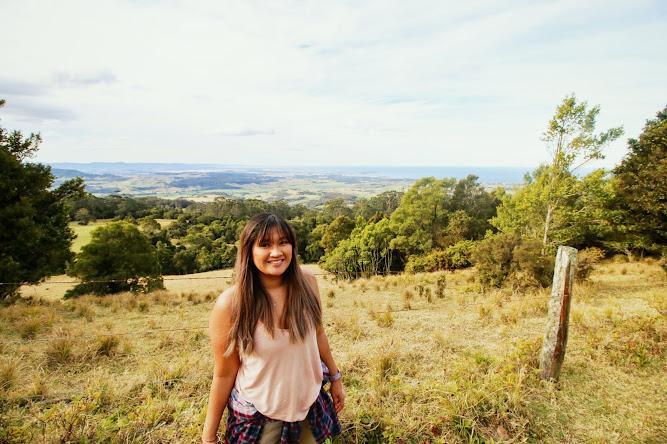 Hoddles Track Illawarra Lookout