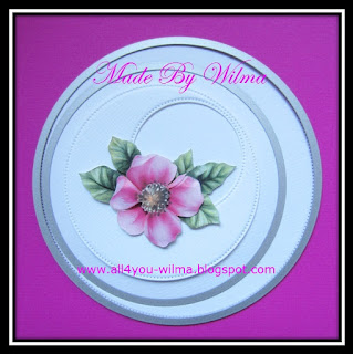 https://www.all4you-wilma.blogspot.com