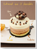 http://moi-gourmande.blogspot.fr/2014/11/entremet-aux-3-chocolats.html