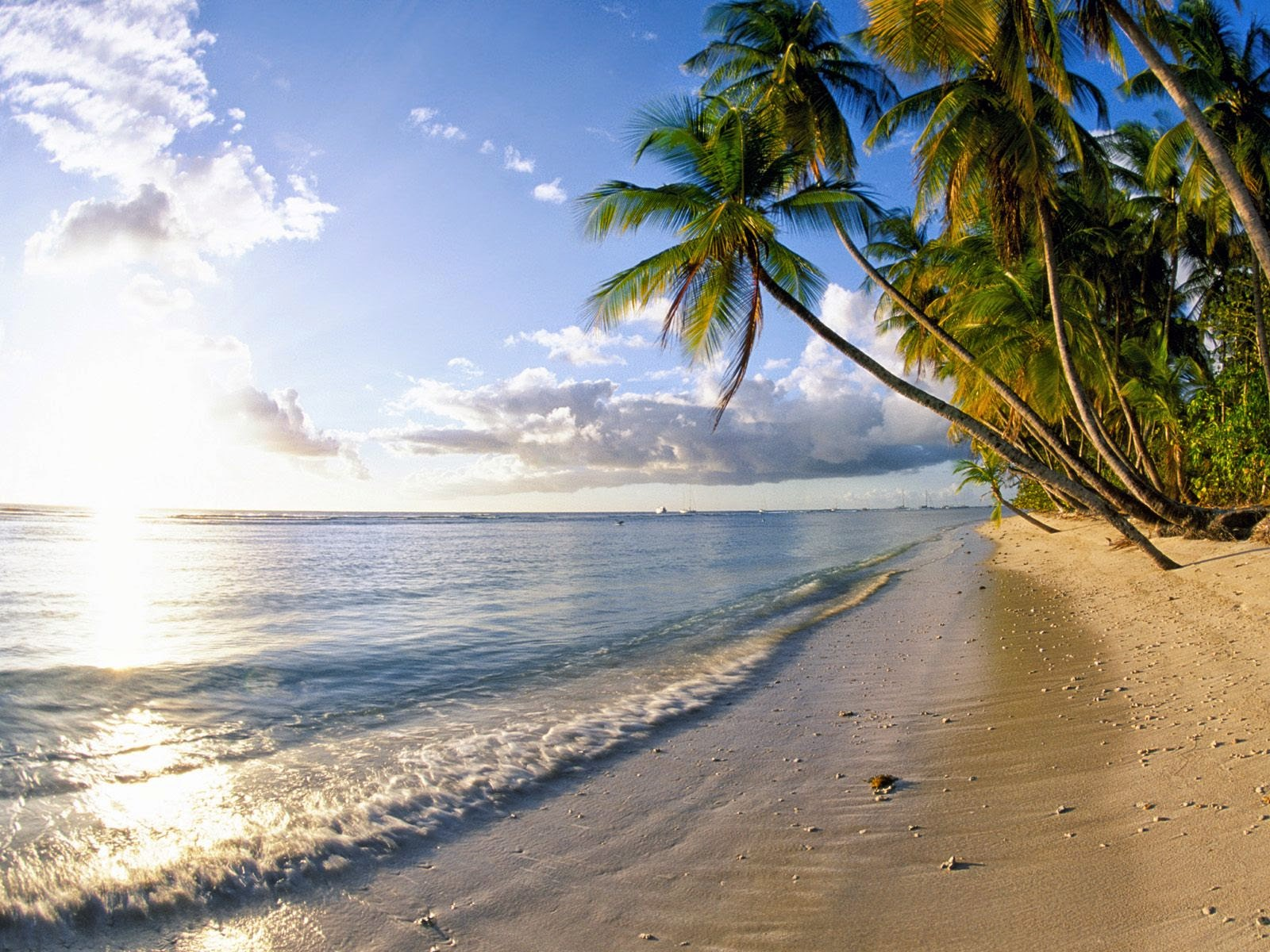 beach wallpapers wallpapers free download for pc