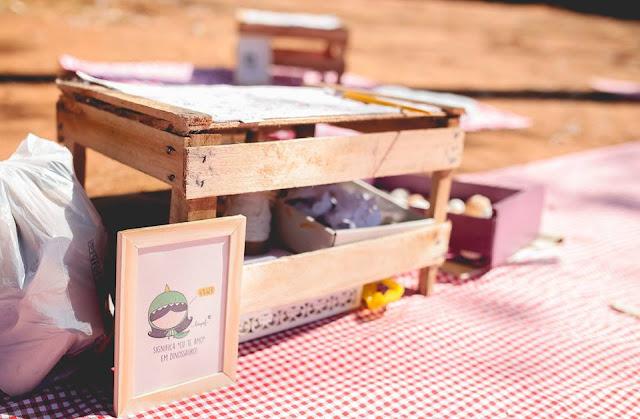 Aniversário Tema Dinossauro - Meninas - DIY - Belo Horizonte - festa no parque - toalhas - caixotes