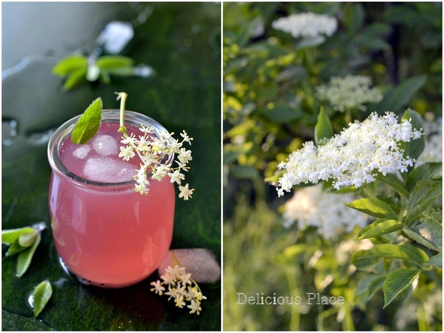 Napój z kwiatów czarnego bzu i rabarbaru