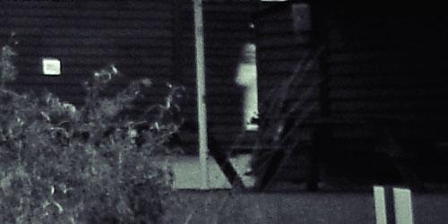 Ghost at Tewin Bury Farm