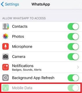 Cara menonaktifkan whatsapp sementara di iphone atau ipad