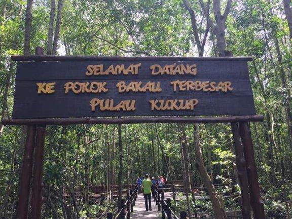 Taman Negara Pulau Kukup Tempat menarik di johor