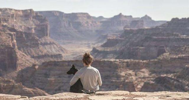 De Las Vegas al Gran Cañón: un tour para ti y tu perro