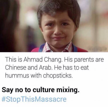 Funny Say No To Culture Mixing Picture Meme