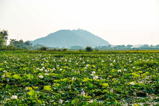 Région de Siem Reap - Cambodge