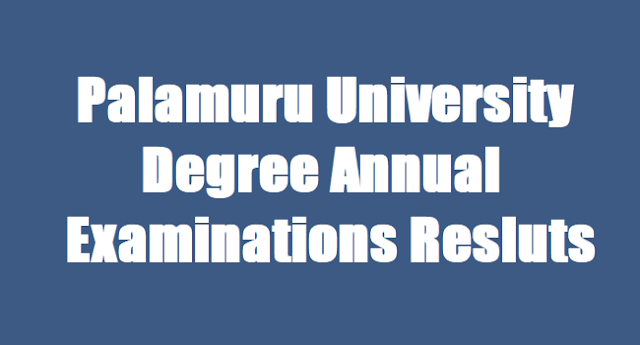 Palamuru University Degree 2017 Results | Palamuru University Degree Exams Results 2017