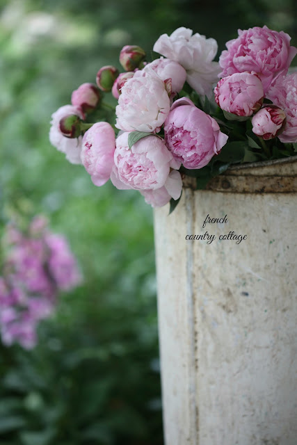 antique grape harvest bucket filled with peonies outdoors