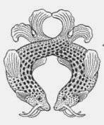 Simbolo budista peces significado
