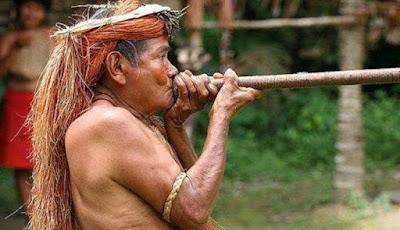Tsimane, Suku Amazon yang Memiliki Arteri Tersehat di Dunia
