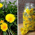 20 Little-Known Uses for Dandelions From Baking and Pain RELIEF to Quickly Removing Warts