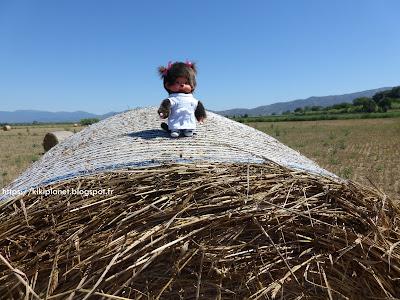 Diana la Monchhichi pose sur un ballot de paille en Espagne
