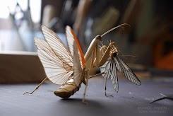 Artis Jepang Menciptakan Serangga dari Bambu, Hasilnya Sungguh Mengejutkan!