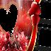 Molduras românticas para fotos-Faça montagem romântica para suas fotografias com nossa  molduras românticas